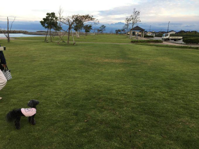 海老江海浜公園