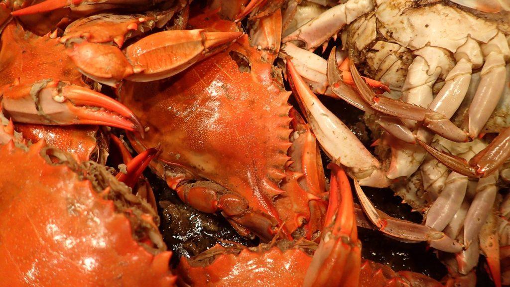 seafood-1013026_1280